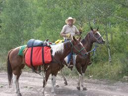 horse saddle horse packing friday u0027s trails