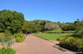 Kirstenbosch National Botanical Garden National Botanical Garden