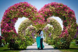 wedding flowers dubai an engagement shoot a camel