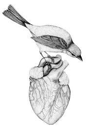 244 best heart and soul images on pinterest anatomical heart my