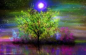 cool trees lakes moons trees waterscapes moonlight draw four view