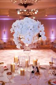 orchid centerpieces 87 best just add orchids images on orchid care