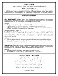 Sample Nursing Resume Objective images of example of nurse resume career resume and curriculum vitae