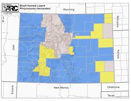 Colorado Population Map Short Horned Lizard Coparc