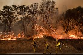Wild Fires In Oregon State by Thousands Flee Wildfires Burning In The Us And Canada Fox News