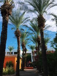 Arizona Travel Diary images Heymalia scottsdale staycation arizona travel diary JPG