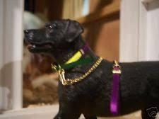 mardi gras pet collar fleurty mardi gras dog collar ebay