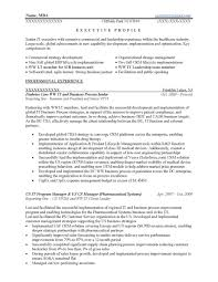 Executive Resume Format Template Cio Resume Examples Business Letters Marketing Cover Letter Mind