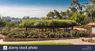 Balboa Park Botanical Gardens by Balboa Park Rose Garden Stock Photo Royalty Free Image 102668026
