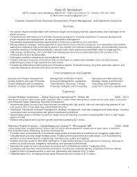Creative Director Resume Samples Fair It Director Resume Templates About Creative Director Resume