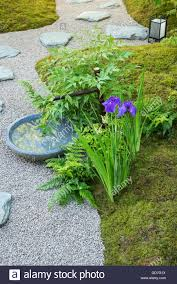 japanese style garden with moss stones gravel water tree and