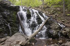 New Jersey Waterfalls images The waterfalls of n j 12 spectacular sights you need to visit jpg