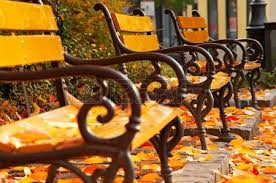 Benches In Park - autumn mood with benches in park stock photo picture and royalty