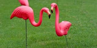 inventor of the plastic pink flamingo passes away