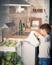 Indoor Gardening by Indoor Gardening Ideas To Grow Food Inside
