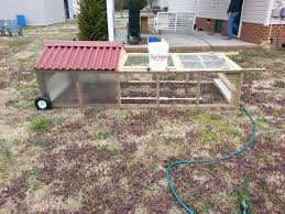 are chicken tractors safe for meat birds backyard chickens