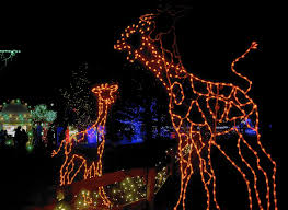 Zoo Lights Dates by Lehigh Valley Zoo U0027s Winter Light Spectacular Returns Saturday