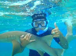 Maryland snorkeling images Hicaco tours snorkel dive caye caulker belize top tips jpg