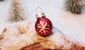 free images petal food holiday christmas decoration