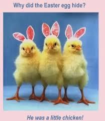 Cute Easter Meme - easter memes