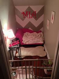 Dog Bedroom Ideas by
