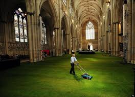york minster cathedral considers olive oil to solve acid rain