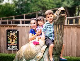 a day at the dallas zoo cute u0026 little dallas petite fashion
