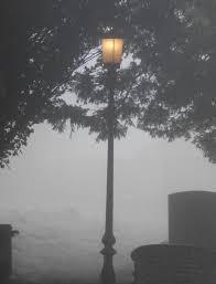 lantern waste