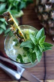 vodka tonic lemon pineapple vodka tonic u2013 dan330