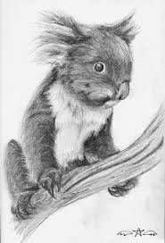 koala bear by tj scorpio88 on deviantart