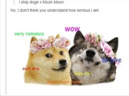 Doge Meme Pronunciation - 163 best you had me at doge images on pinterest doge meme funny