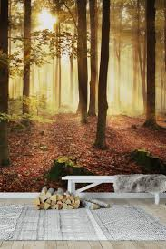 90 best forest wall murals images on pinterest wallpaper designs autumn forest wall mural wallpaper