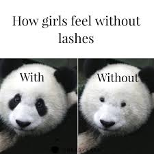 Panda Mascara Meme - panda quotes quotes of the day