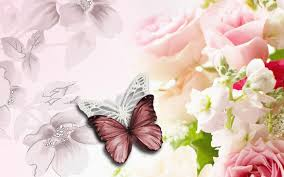 butterfly with flowers wallpapers on wallpaperget com