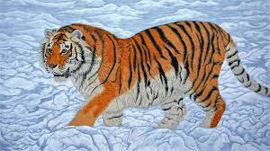 conservation siberian tiger cub wildlife