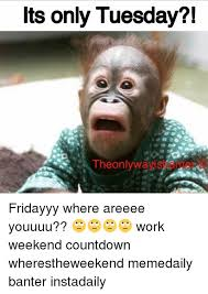Work Meme Funny - tuesday work meme funny quotesbae