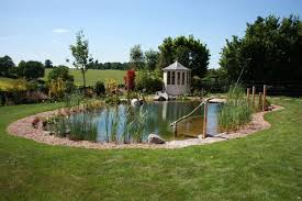 Backyard Swimming Ponds by Home Backyard Swimming Pool 4 Garden Ponds And Pools Pinterest