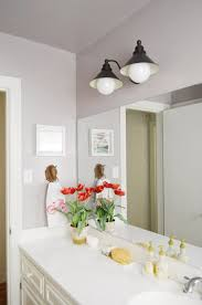 painting the bathroom young house love