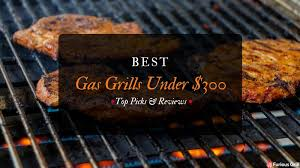 Top Gas Grills Best Gas Grills Under 300 Dollars Top Rated U0026 Reviews