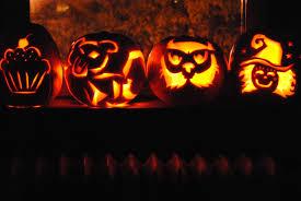 wildlife wednesday jack o lantern edition the sweet life