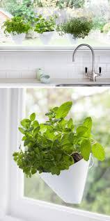 plant stand plant shelf window ledgereasyr shelfindoor sill
