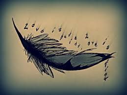 collection of 25 feather birds n quote design