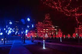 tree lighting city of