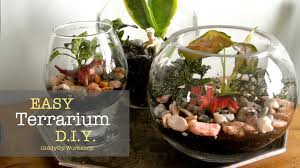 easy diy glass terrariums youtube