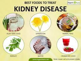kidney disease renal disease causes symptoms treatments