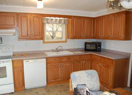 10 X 10 Kitchen Cabinets by Excellent White Cabinets For Sale Tags White Kitchen Cabinets