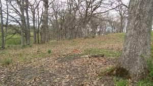 White Oak Tree Bark Home