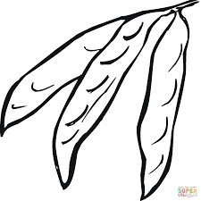 green bean coloring pages easy deliyazar com coloring home