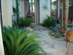 Arizona Landscaping Ideas by 133 Best Desert Landscapes Images On Pinterest Desert Gardening