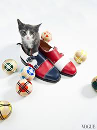 the cat and the flat spring shoes and kittens make the perfect
